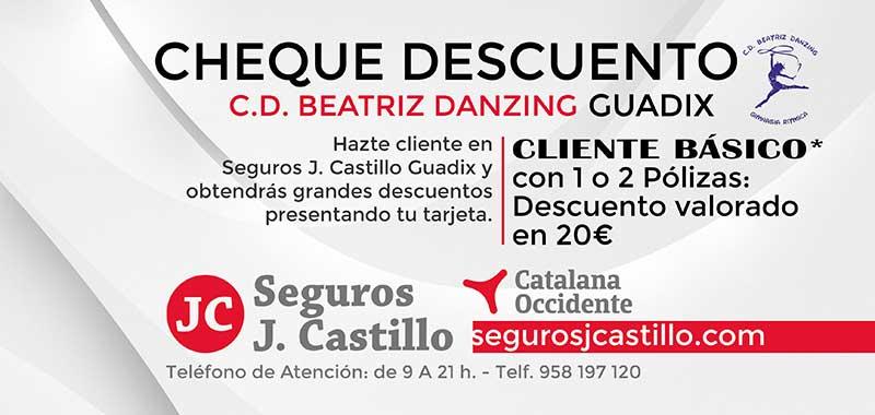 Beatriz Danzing Seguros J. Castillo